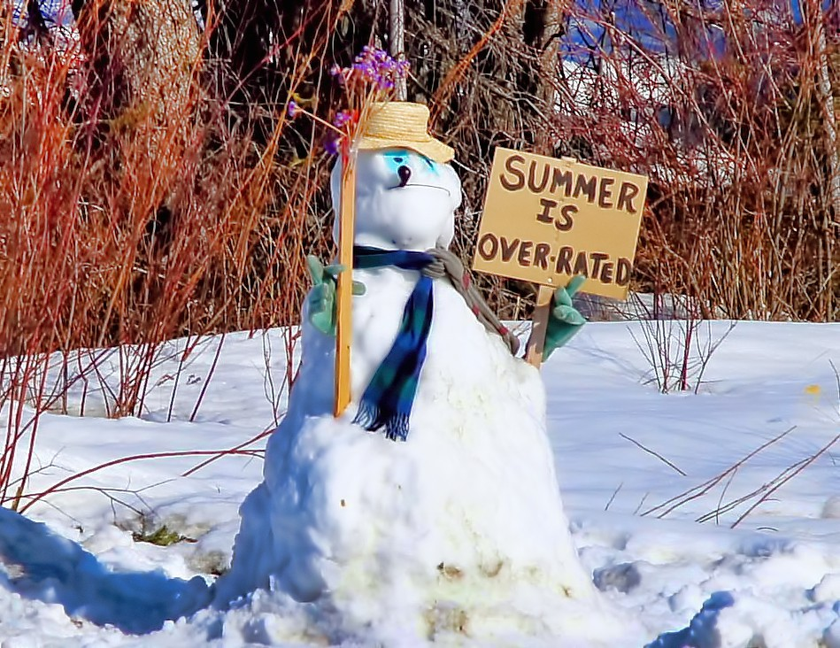 Image Result For Snow Man February