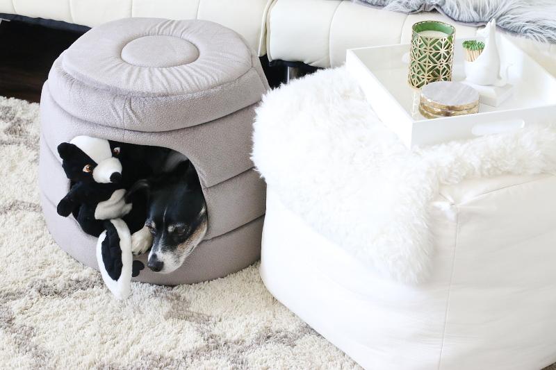 louis-living-room-sofa-carpet-pet-bed-8