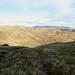 Descent to the Stank Glen