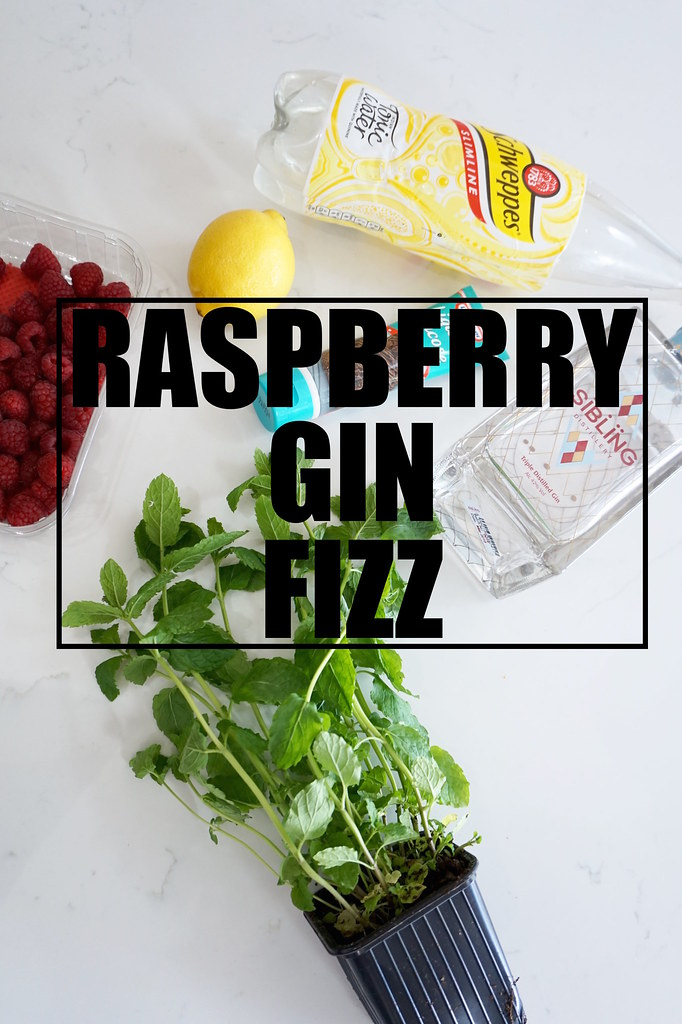 raspberry gin fizz cocktail recipe