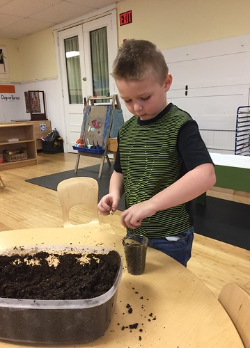 planting his bean