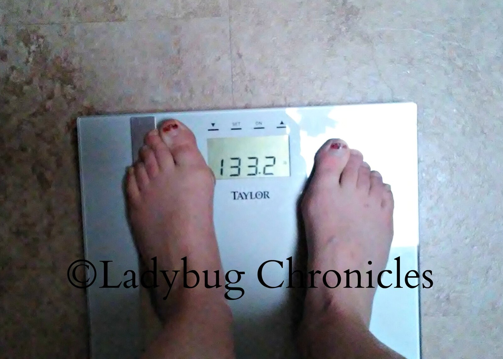 week 2 weigh in ldbg