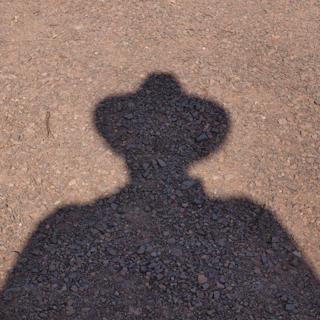Selfie-Silhouette