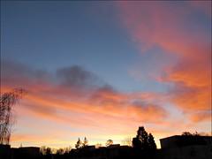 Sunrise 1/27/17