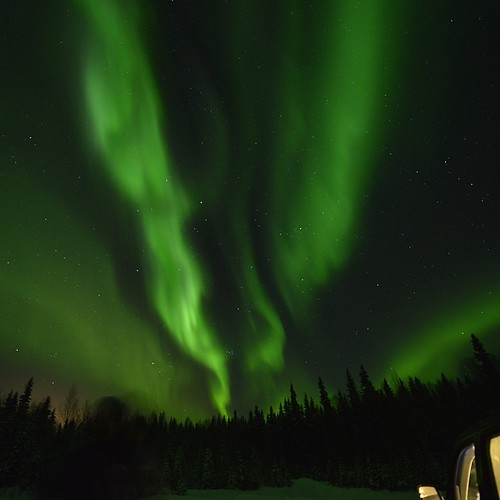 Alaska Aurora #Alaska  #PolarLights #USA #America #NorthPole #NorthernLights #Cold #snow #Ice #Fairbanks #Aurora #Snow