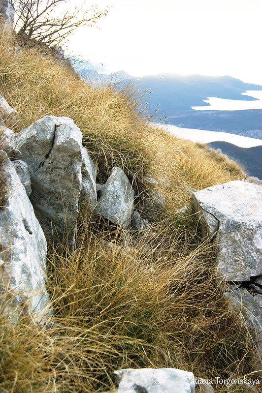 Вид в сторону Тиватского залива и Будвы