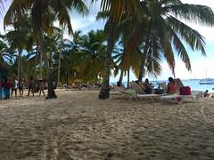 125 - Am Strand von Saona 02