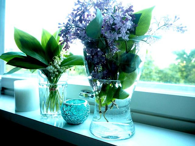 kevätkukat1 kesä, Kevätkukat2 kesä, luonto, nature, kesä, summer, suomi, finland, kukat, kukka, metsä, forest, flower, flowers, syreeni, sireeni, purple, violetti, valkoinen, white, kielo, lily of the valley, summer days, kesä päivät, poimia kukkia, luonnosta, luonnon helma,