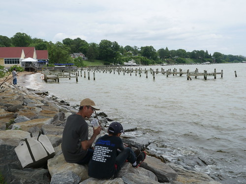 Photo of young men fishing from a jetty for Dnr fishing report md