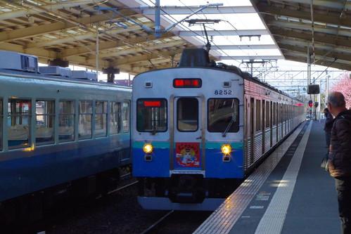IMGP6292