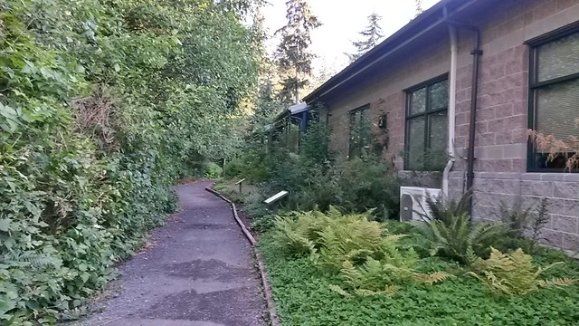 Mukilteo Library wilderness garden