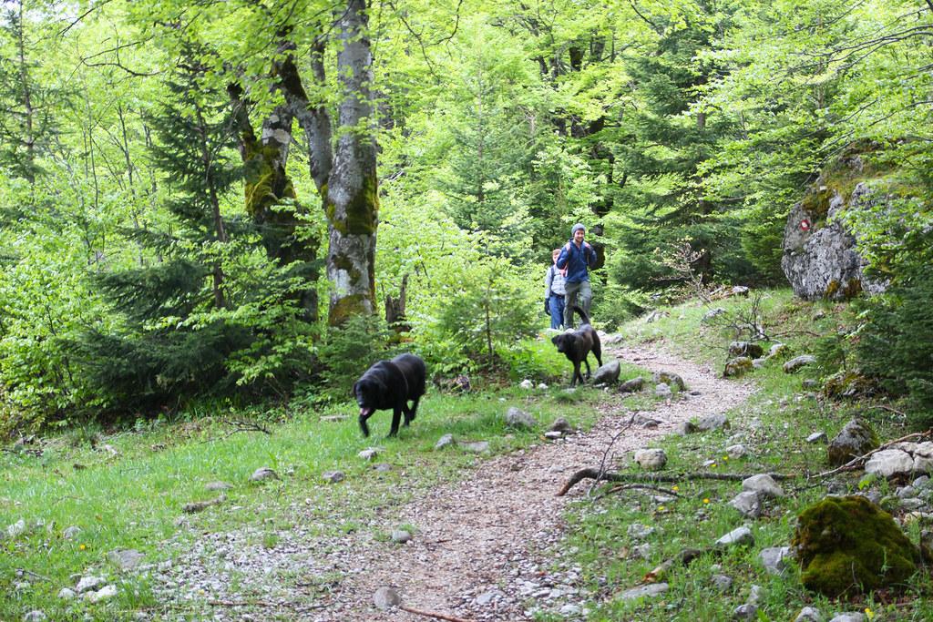 Montenegro [13]: National Park Durmitor