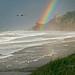 New Year's Rainbow on the Oregon Coast (Zoom)