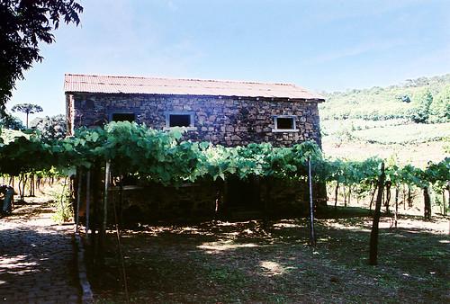 Cantina e Casa Strapazzon