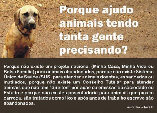 ajuda_animais