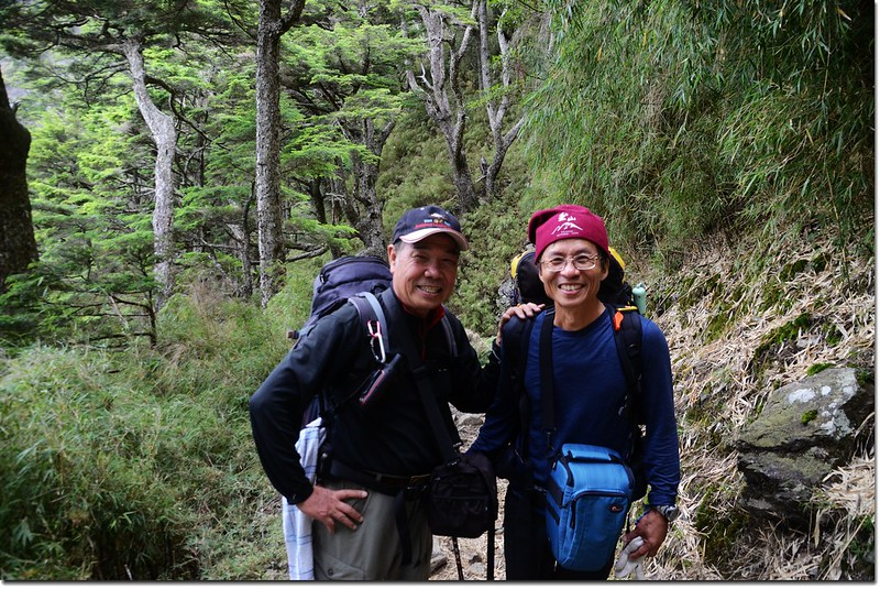 攝於玉山登山步道 7