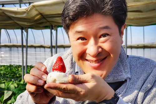 Chawanさん photo polepole farm strawberry picking 29