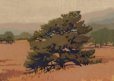 Yellow Pine. Artist Dan Miller
