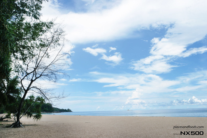 naithorn beach phuket with trees