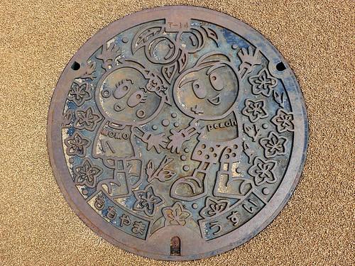 Momoyama Wakayama, manhole cover (和歌山県桃山町のマンホール)