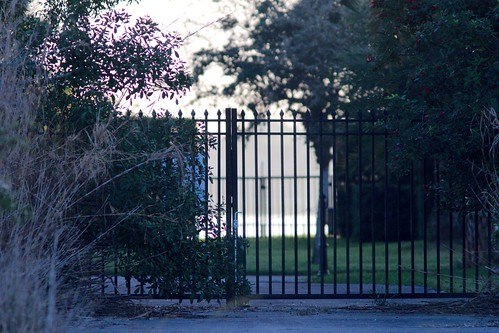 Back Gate 20161216