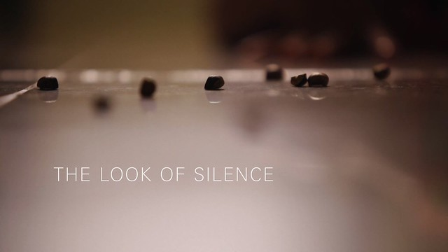 The Look of Silence0