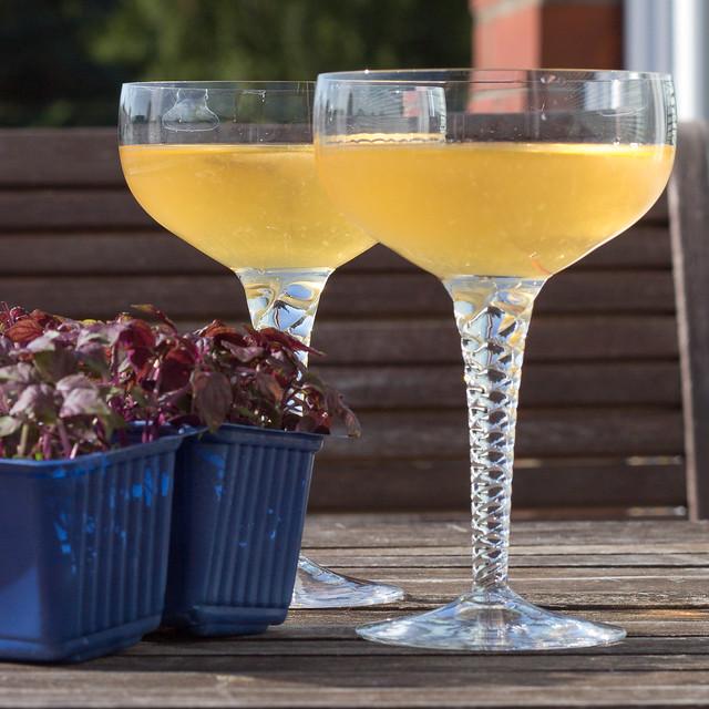 Shiso Martini