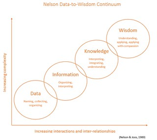 Data to Wisdom Continuum