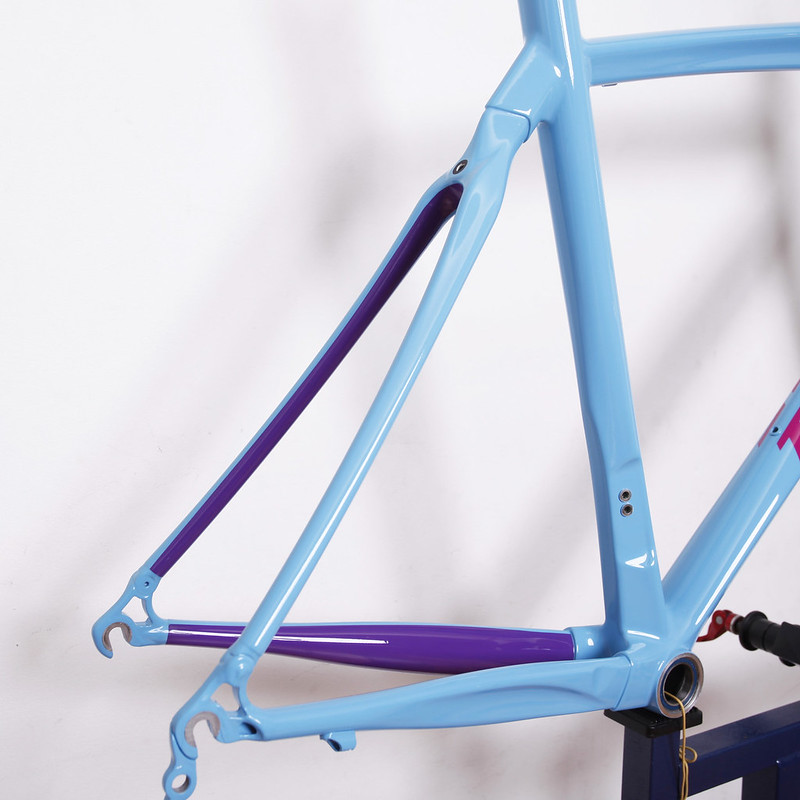 TIME Carbon Frame & Fork Repainted by Swamp Things.