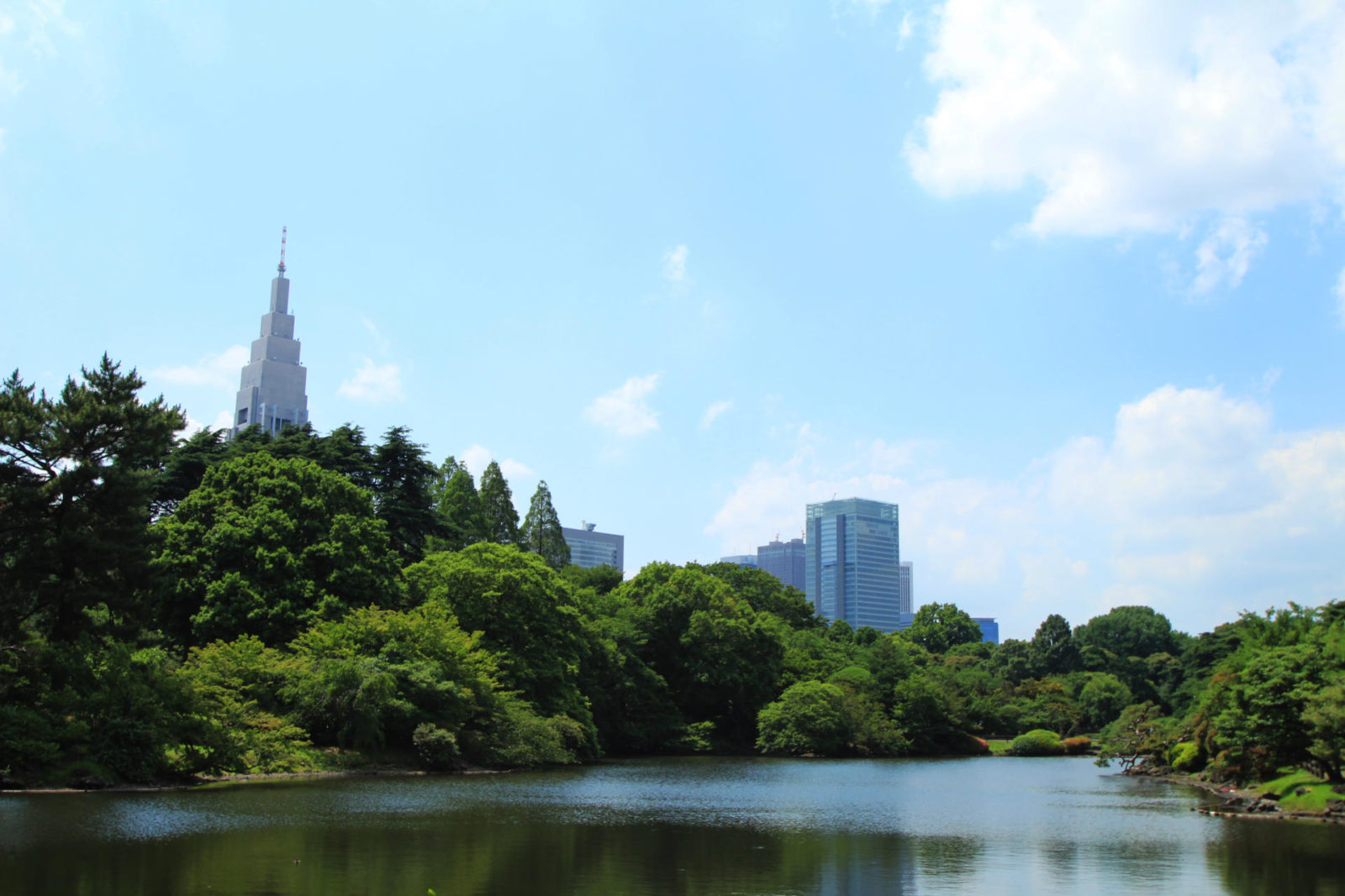 Shinjuku Gyoen Garden Tokyo summer travel blogger uk