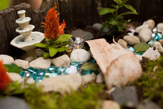 061015 Fairy Garden 005