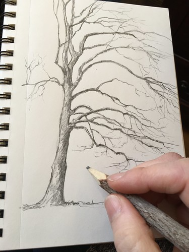 Branch pencil art