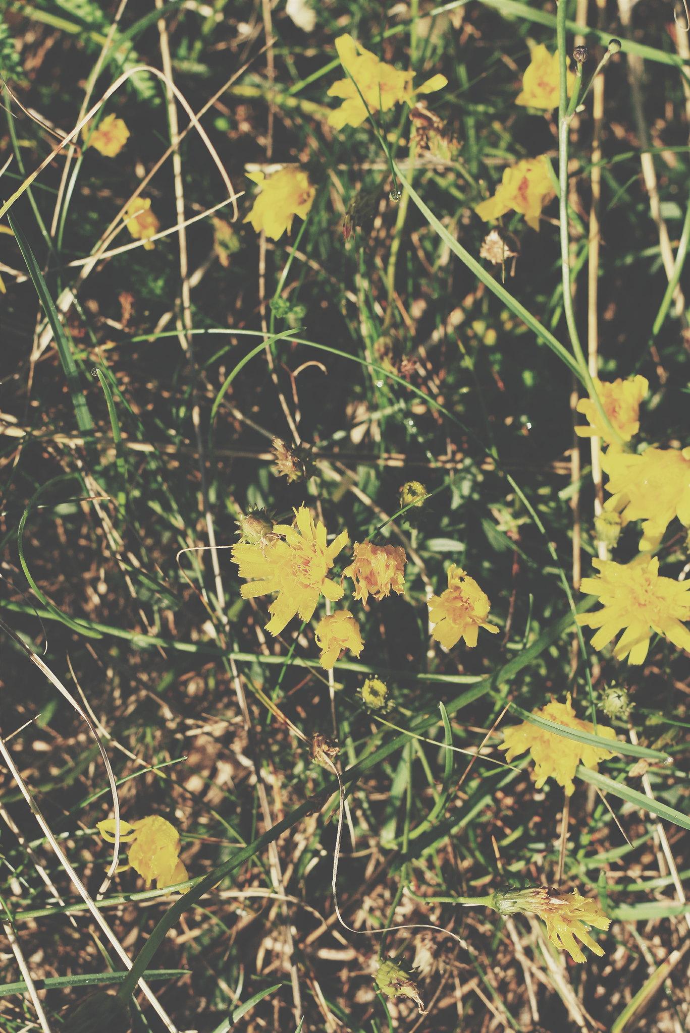LIEBLINGSLINKS #12: Sommerspuren hinterlassen