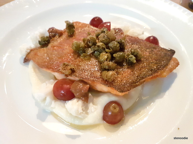 Ontario Trout