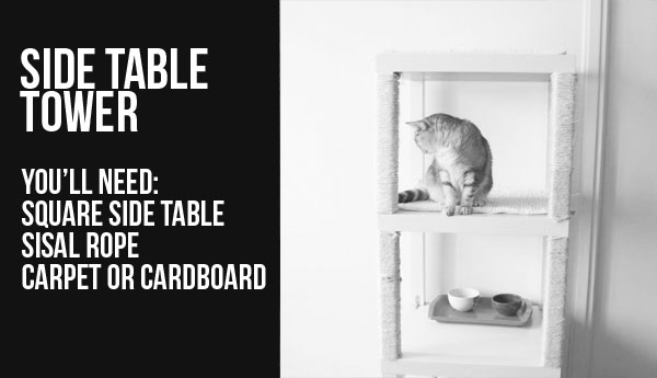 cat-hack-side-table-bw