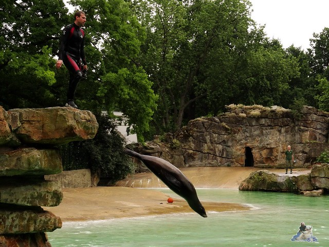 Zoo Berlin 26.06.2015  37