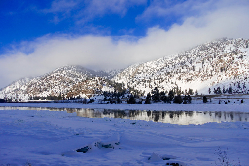 Flathead River ~ frozen