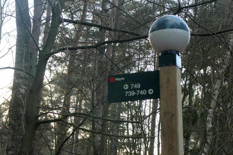Center Parcs Elvedon Forest Review