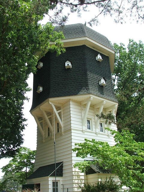 Pine Valley Tea House near #8