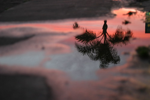 Puddle Sunset | by nathangibbs