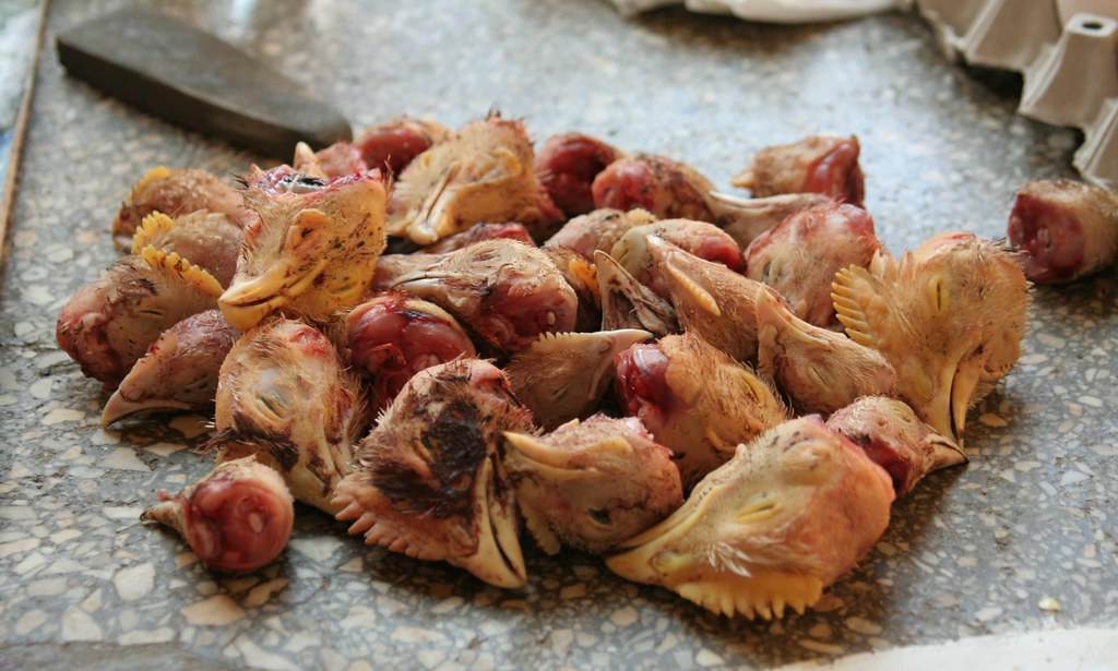 chickenheads | At Bessarabska Rynok | Carpetblogger | Flickr - photo#21