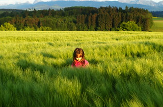Girl in a field of grass I | by Bill Liao