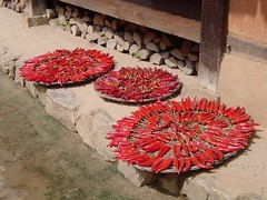 Sun Dried Red Pepper | by The Chosun Bimbo