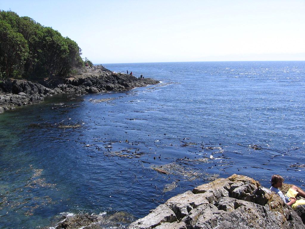 Vancouver Treasure Island