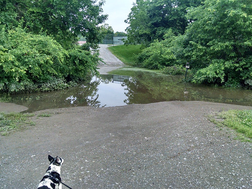 2015-06-04 - Flooding at the Park - 0009 [flickr]