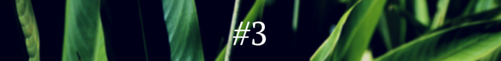 #1(2)