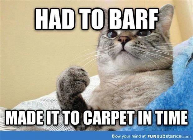 Cat Barf