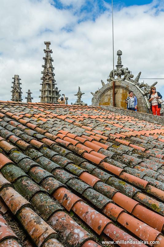 Puro avistamiento de cigüeñas desde el tejado de las catedrales.