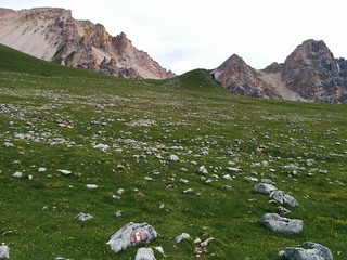 Aufstieg über die Almwiesen