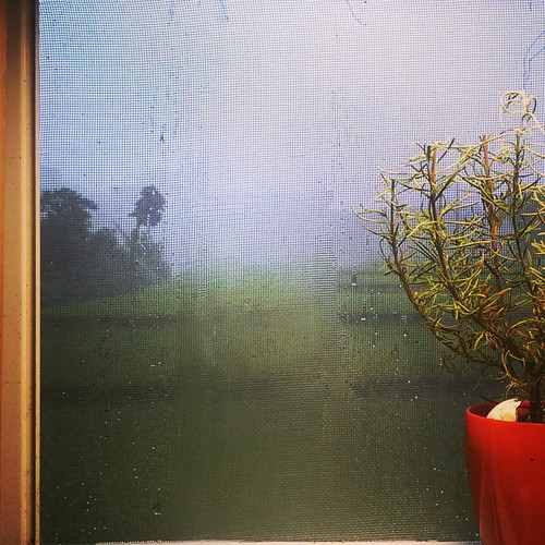 20150623 外面下好大好大的雨啊!  #戴家日常  #我那療癒的廚房小窗
